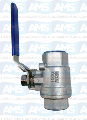 316 Stainless Ball Valve 4""