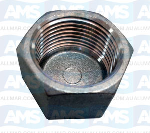 """316 Stainless Cap 3/8"""""""
