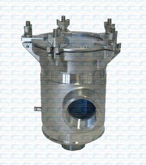 "4"" BSP Thread Strainer with Clear Lid"